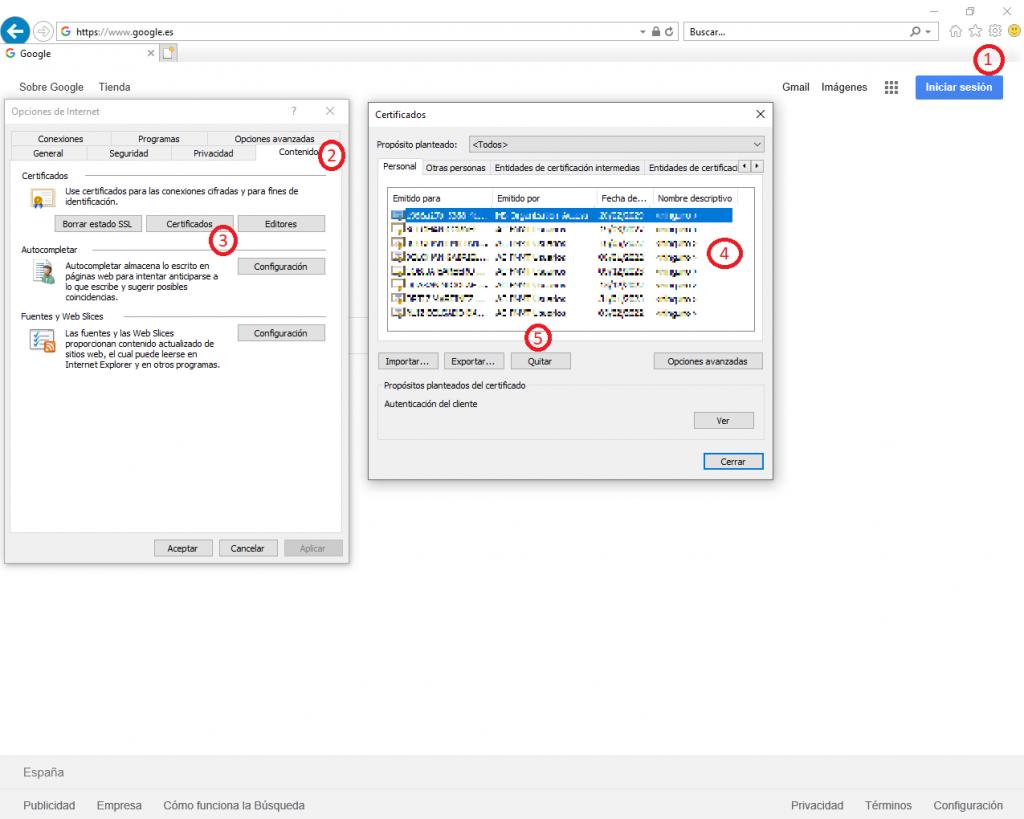 Pasos a seguir para Eliminar un Certificado Digital en Internet Explorer.