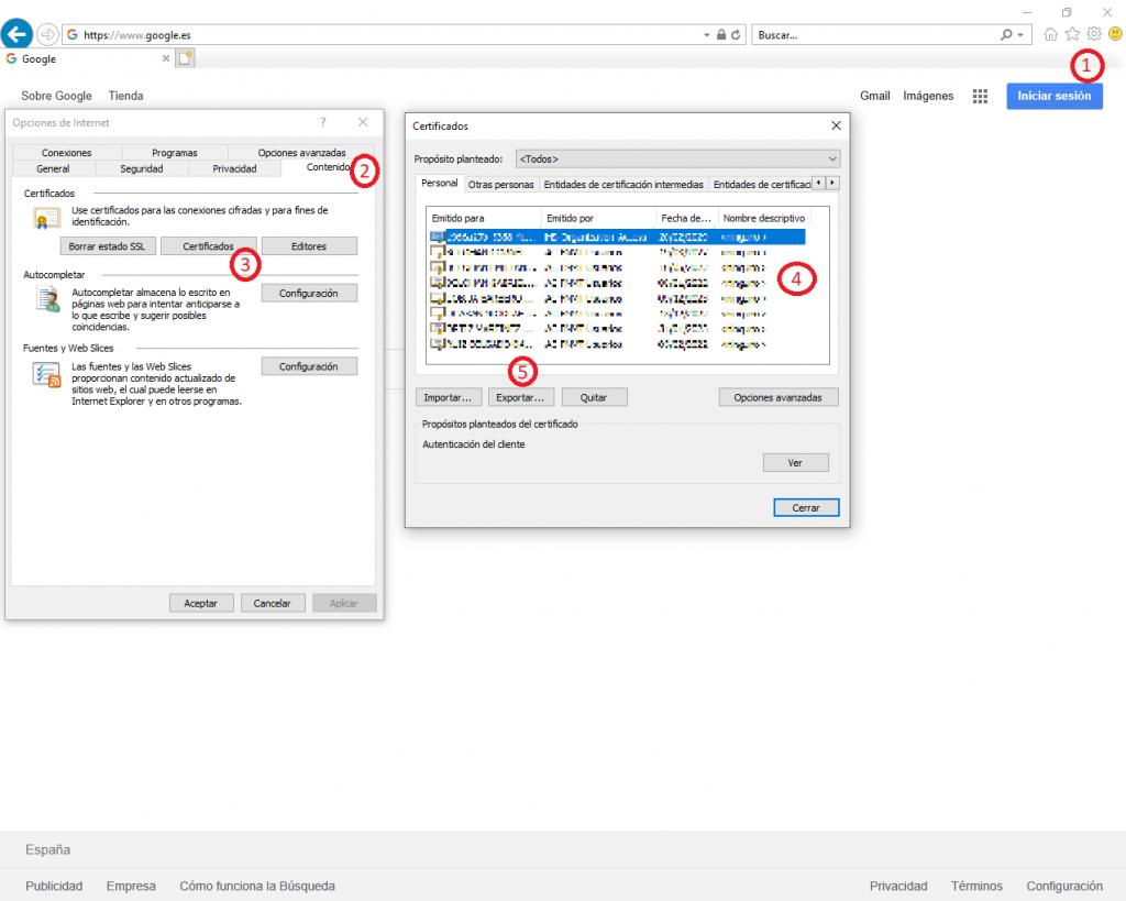 Pasos a seguir para Exportar un Certificado Digital en Internet Explorer.
